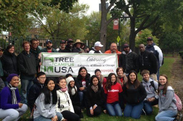 Tree campus